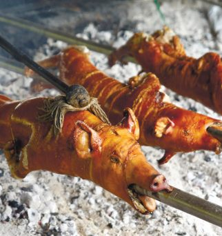 2016 Sunstars Best of Cebu - best lechon